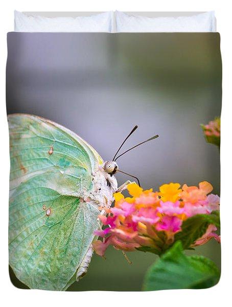 Lemon Emigrant Butterfly Duvet Cover by Scott Carruthers