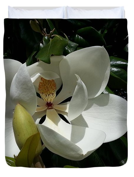 Lemon Magnolia Duvet Cover by Caryl J Bohn