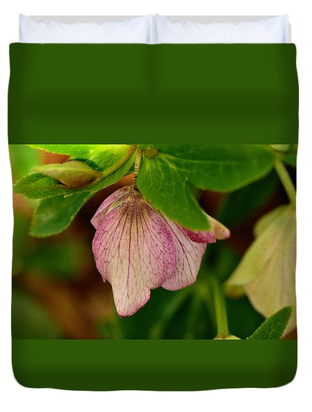 Duvet Cover featuring the photograph Lenton Rose Of Winter by Larry Bishop
