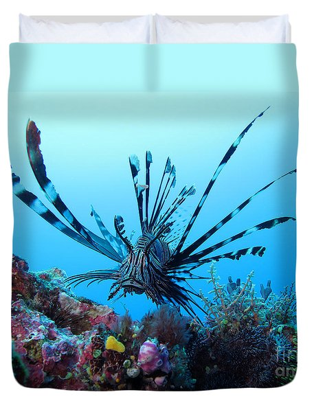Leon Fish Duvet Cover by Sergey Lukashin