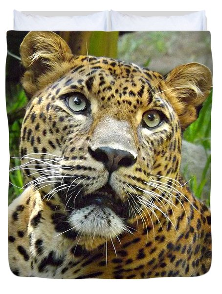 Leopard Face Duvet Cover by Clare Bevan