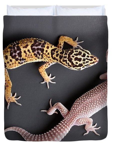 Leopard Gecko E. Macularius Collection Duvet Cover