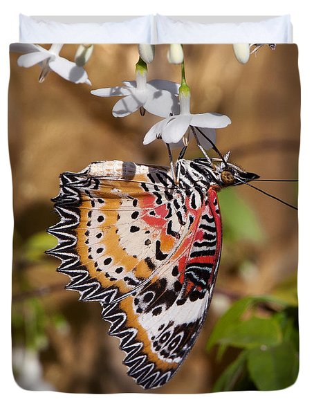 Duvet Cover featuring the photograph Leopard Lacewing Butterfly Dthu619 by Gerry Gantt