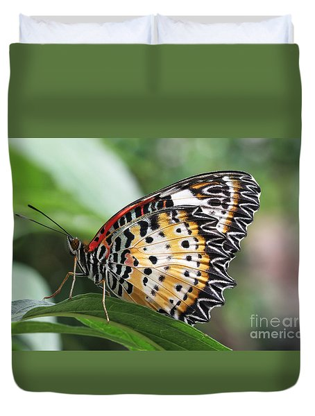 Leopard Lacewing Butterfly Duvet Cover by Judy Whitton