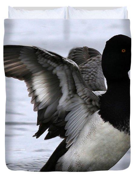 Lesser Scaup Duck  Duvet Cover