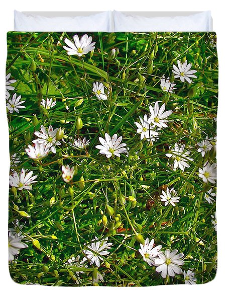 Lesser Stitchwort Near Lobster Cove In Gros Morne Np-nl Duvet Cover