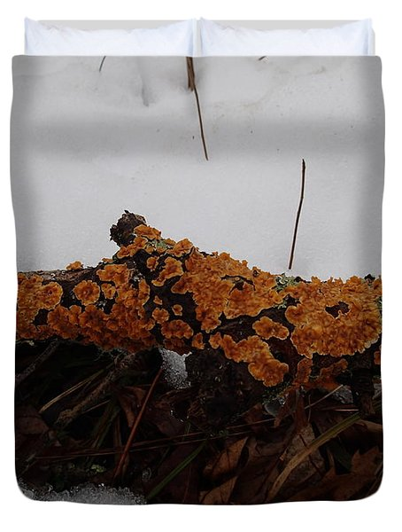 Duvet Cover featuring the photograph Lichen N'snow by Robert Nickologianis