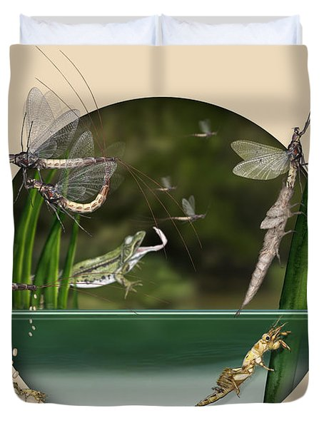 Life Cycle Of Mayfly Ephemera Danica - Mouche De Mai - Zyklus Eintagsfliege - Stock Illustration - Stock Image Duvet Cover