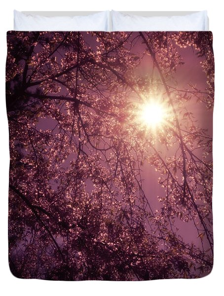 Light And Cherry Blossoms Duvet Cover by Vivienne Gucwa