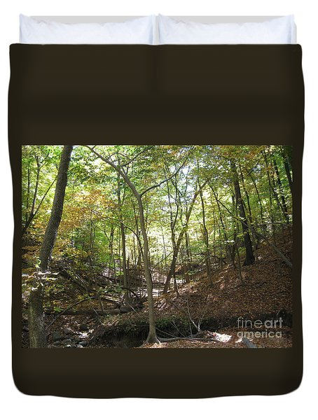 Light And Shadow Through The Forest Duvet Cover