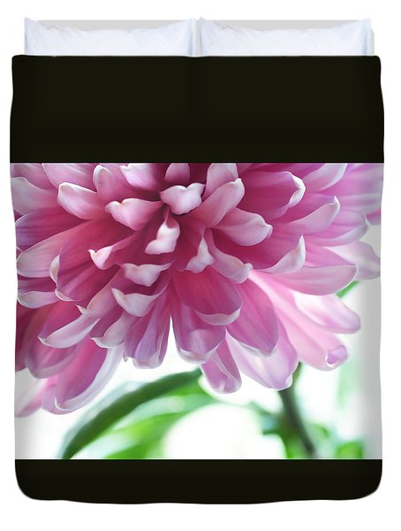 Light Impression. Pink Chrysanthemum  Duvet Cover by Jenny Rainbow