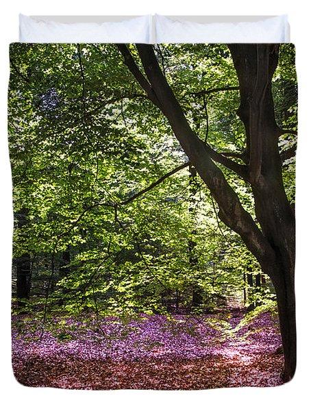 Light Tree In Hoge Veluwe National Park. Netherlands Duvet Cover by Jenny Rainbow