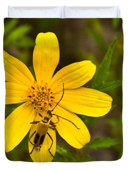 Lightning Bug On Flower Duvet Cover