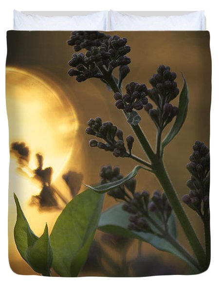 Lilacs At Sunset Duvet Cover