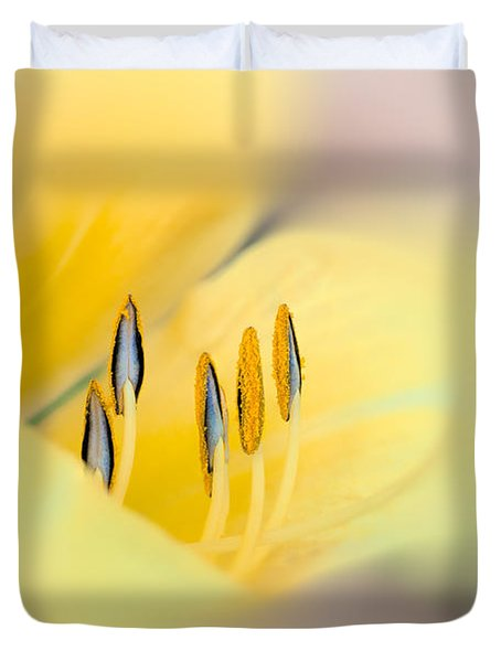 Lily Impressions Duvet Cover