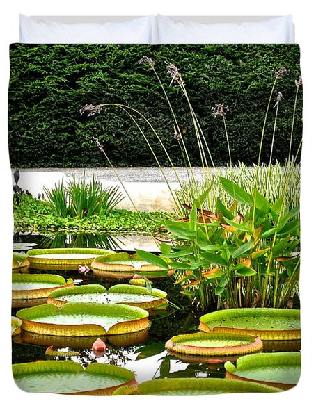 Lily Pad Garden Duvet Cover by Frozen in Time Fine Art Photography