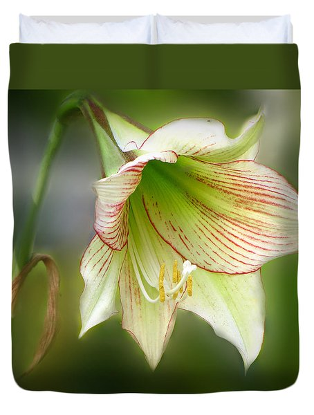 Lily Duvet Cover by Phil Penne