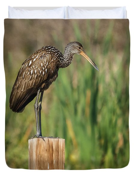 Limpkin Duvet Cover by Jane Luxton