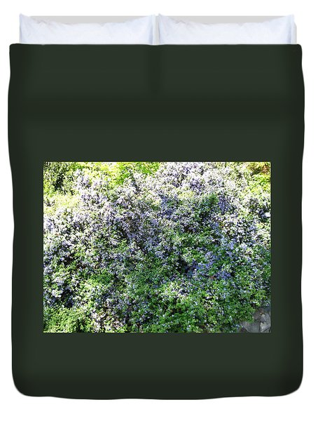 Lincoln Park In Bloom Duvet Cover by David Trotter