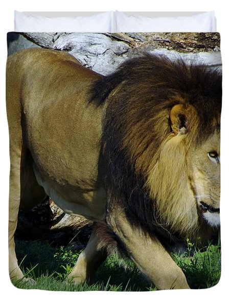 Lion 1 Duvet Cover
