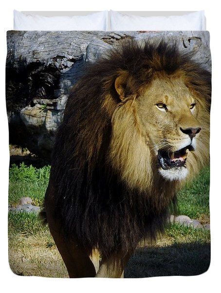 Lion 2 Duvet Cover