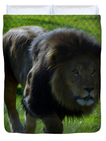 Lion 4 Duvet Cover