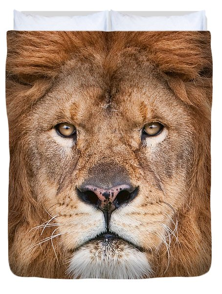 Duvet Cover featuring the photograph Lion Close Up by Jerry Fornarotto