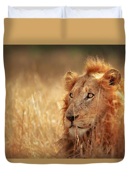 Lion In Grass Duvet Cover by Johan Swanepoel