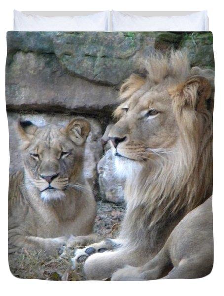 Lion Love Duvet Cover by Amanda Eberly-Kudamik