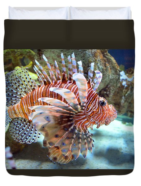 Lionfish Duvet Cover by Sandi OReilly