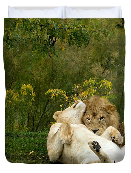 Lions In Love Duvet Cover