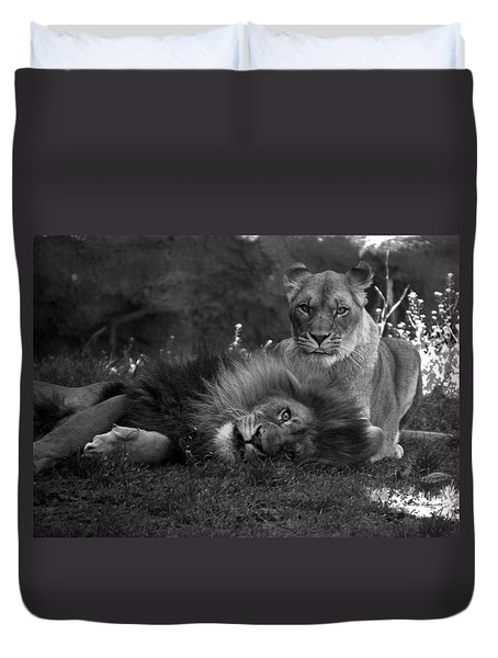 Lions Me And My Guy Duvet Cover by Thomas Woolworth