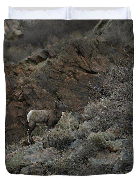 Little Bighorn Duvet Cover by Ernie Echols