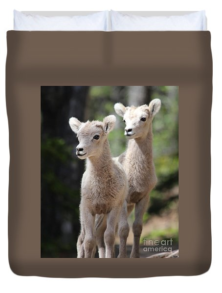 Little Bighorns Duvet Cover