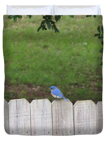 Duvet Cover featuring the photograph Little Bird by Beth Vincent