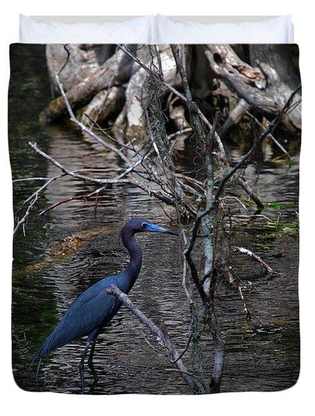 Little Blue Heron Duvet Cover by Skip Willits