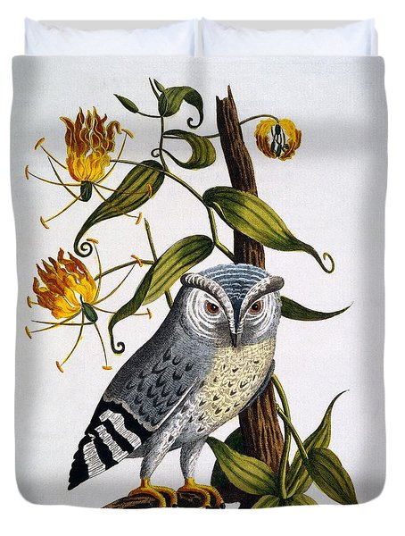 Little Horned Owl, From Indian Zoology Duvet Cover