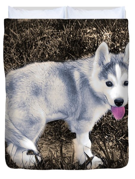 Little Huskie Pup Duvet Cover by Bill Cannon