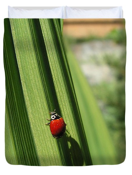 Duvet Cover featuring the photograph Ladybird by Cheryl Hoyle