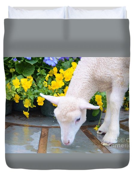 Little Lamb Duvet Cover by Kathleen Struckle