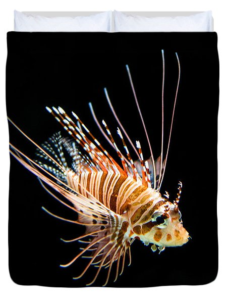 Little Lionfish Duvet Cover by Jamie Pham