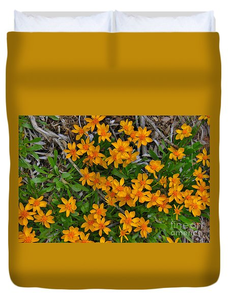 Duvet Cover featuring the photograph Little Sunflower In The Mountains by Janice Rae Pariza
