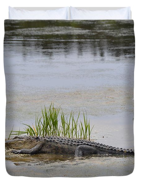 Duvet Cover featuring the photograph Living In Harmony by Judith Morris
