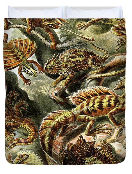 Lizards Lizards And More Lizards Duvet Cover by Unknown
