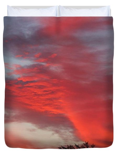 Lobster Sky Duvet Cover by Barbara Griffin
