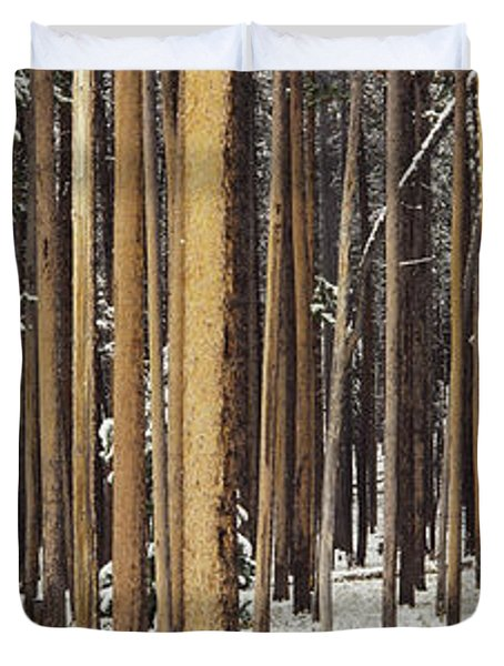 Lodgepole Pines And Snow Grand Teton Duvet Cover