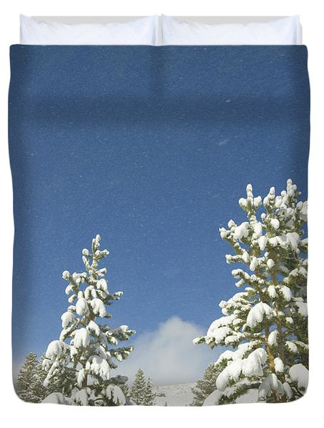 Lodgepole Pines In The Wind Duvet Cover