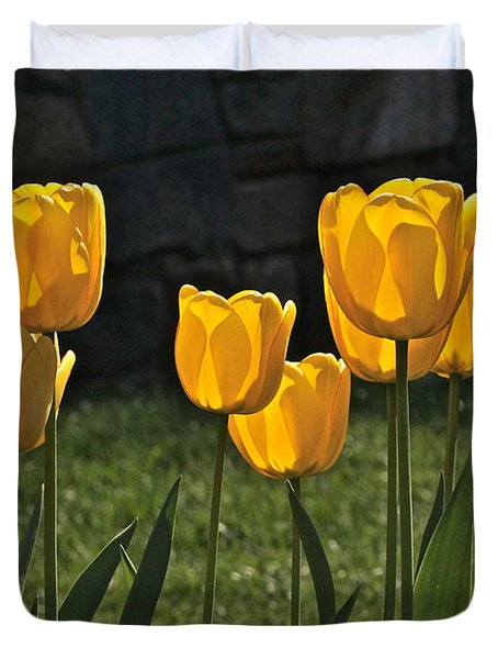 Lollipop Tulips And Grass And Stone Wall Duvet Cover by Byron Varvarigos