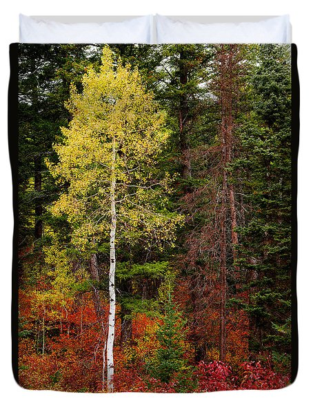 Lone Aspen In Fall Duvet Cover by Chad Dutson