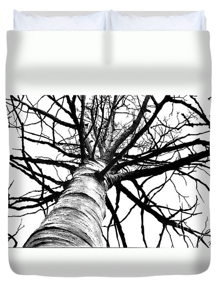 Lone Birch Duvet Cover